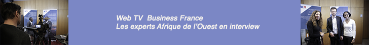 Bannière Business France Africa Salons